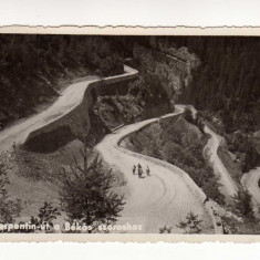 CHEILE BICAZULUI ANIMATA, DRUMUL SERPUIT, FOTOFILM NR 1, BEKAS SZOROS - Carte Postala Transilvania dupa 1918, Circulata, Fotografie