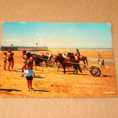Pitoresc - ponei - animale - Franta - circulata 1973 - 2+1 gratis - RBK10028, Fotografie