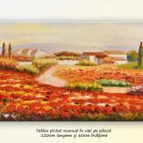 Pictura living - Peisaj cu maci si case - ulei pe panza de in, 120x60cm - Pictor roman, An: 2015, Peisaje, Altul