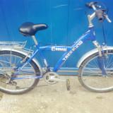 Bicicleta Mountain Bike Courage, 20 inch, 26 inch, Numar viteze: 21