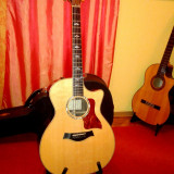 Chitara acustica - Taylor 814 CE, Chitara electro-acustica