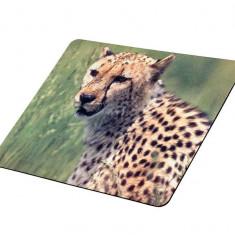 Mousepad Tracer Cheetah S02
