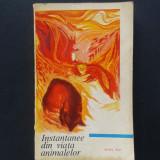INSTANTANEE DIN VIATA ANIMALELOR Ionel Pop Editia a II a