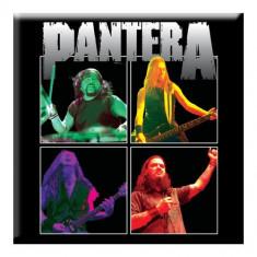 Magnet Pantera - Band Photo