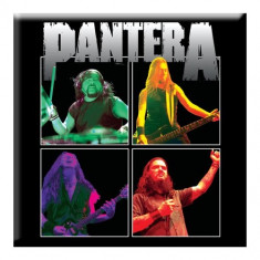 Magnet Pantera - Band Photo