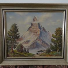 Tablou Munte inzapezit-Ulei pe panza- 50x60 cm - Pictor strain, Peisaje, Altul