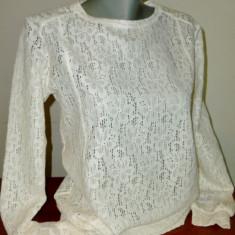 Bluza Dama din Dantela Ivoire, Marime: S, M, L, Culoare: Din imagine, Maneca lunga, Universala, Vascoza