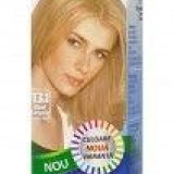 Cosmetice - VOPSEA PAR BLOND SAMPANIE NR.13.1