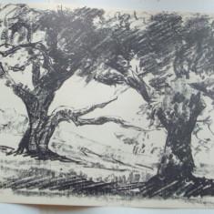 STEFAN POPESCU - LITOGRAFIE SEMNATA (1943)