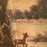 Tablou, Natura, Ulei, Altul