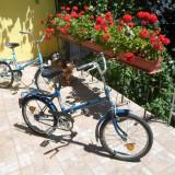 Bicicletă Pegas Practic 3120, pliabilă, cu şa reglabilă, de oraş, în stare bună - Bicicleta pliabile, 21 inch, 20 inch, Numar viteze: 1