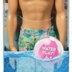 Papusa Barbie Ken Doll Beach