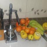 Presa Storcator FoodSaver citrice inox in cutia originala aproape nou