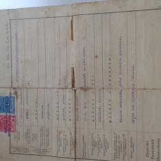 Certificat de botez vechi - Pasaport/Document