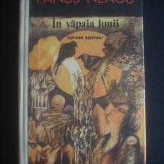FANUS NEAGU - IN VAPAIA LUNII - Roman
