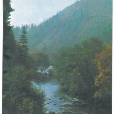7296 - Romania ( 389 ) - Harghita, TUSNAD, OLT VALLEY - postcard - unused - Carte Postala Transilvania dupa 1918, Necirculata, Printata