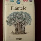 Enciclopedie - Fabienne Fustec - Plantele - 504583