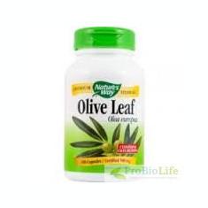 OLIVE LEAF 60cps