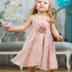 Ruby Rose Rochie Cu Trena (Imbracaminte pentru varsta: 4 ani - 104 cm)