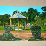 Masina - camping - Oradea 1972 - 2+1 gratis - RBK13074 - Carte Postala Crisana dupa 1918, Circulata, Fotografie