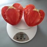 Seminte rosii - Rosii soiul ´Inima de bou ´ - 5 seminte pentru semanat