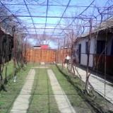 Casa de vanzare in Lipia!