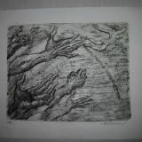 Tablou, Abstract, Cerneala, Abstract - GRAVURA -- MARCEL CHIRNOAGA