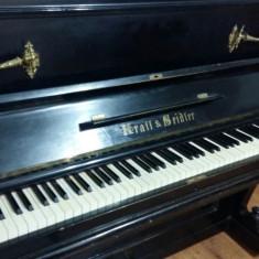 Pianina Altele Krall&Seidler