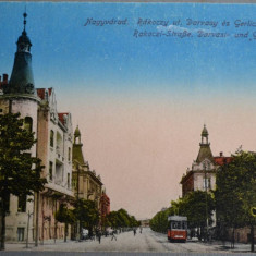 ORADEA (Nagyvarad) - Rackoczy uy, Darvasy es Gerliczy palotak - 1917 - tramvai - Carte Postala Crisana 1904-1918, Necirculata, Fotografie