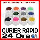 KIT SET 12 MODELE GEL GELURI COCO CU SCLIPICI PT LAMPA UV COLORATE 5ML (8G)