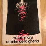 MIHAI TIMARU--AMINTIRI DE LA GHERLA - Istorie