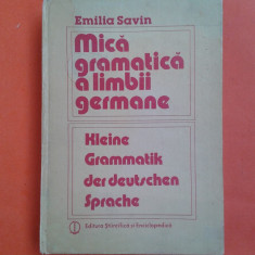 MICA GRAMATICA A LIMBII GERMANE Emilia Savin - Curs Limba Germana