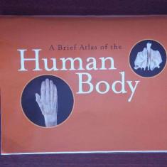 Atlas de Anatomie Umana fotografic